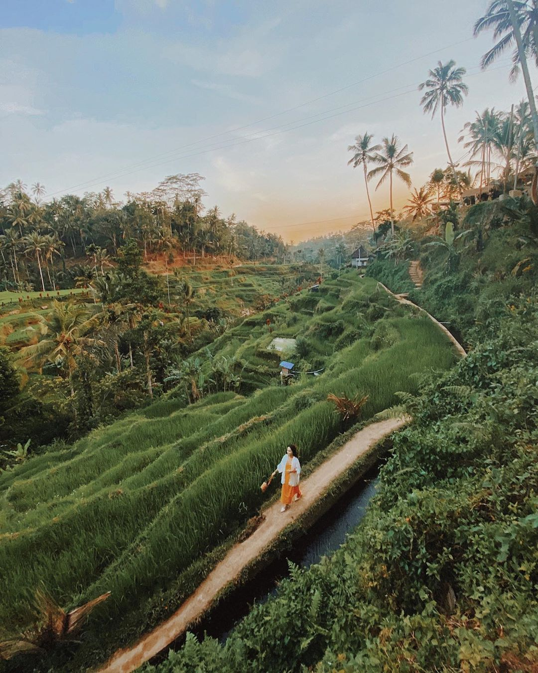 Kinh nghiệm du lịch Bali tự túc - Ubud