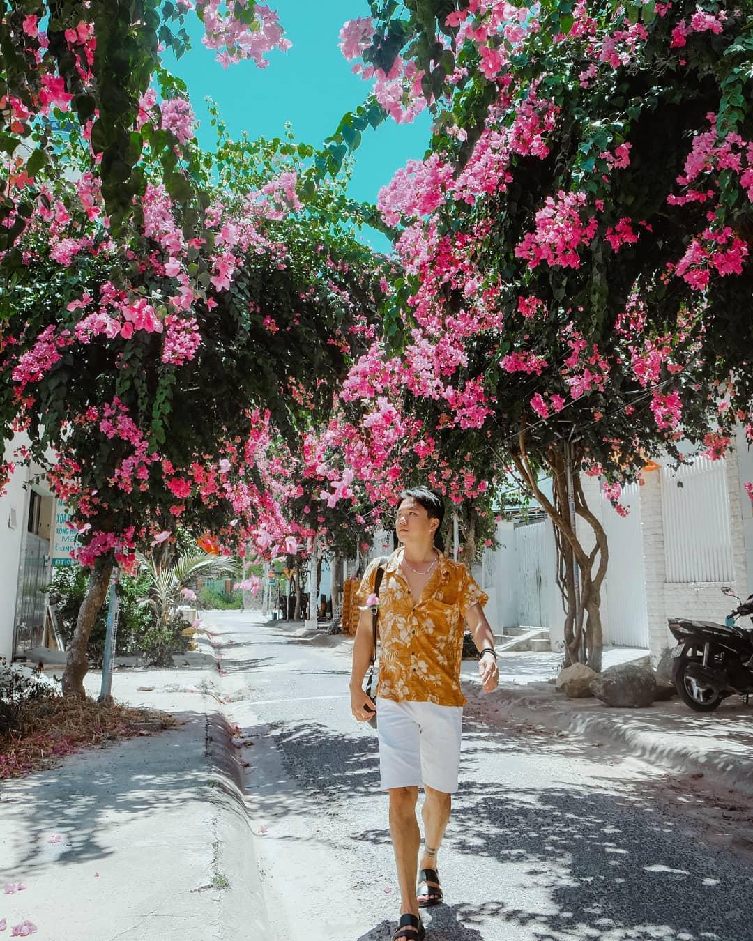 Kinh nghiệm du lịch Nha Trang - đường Bạch Thái Bưởi