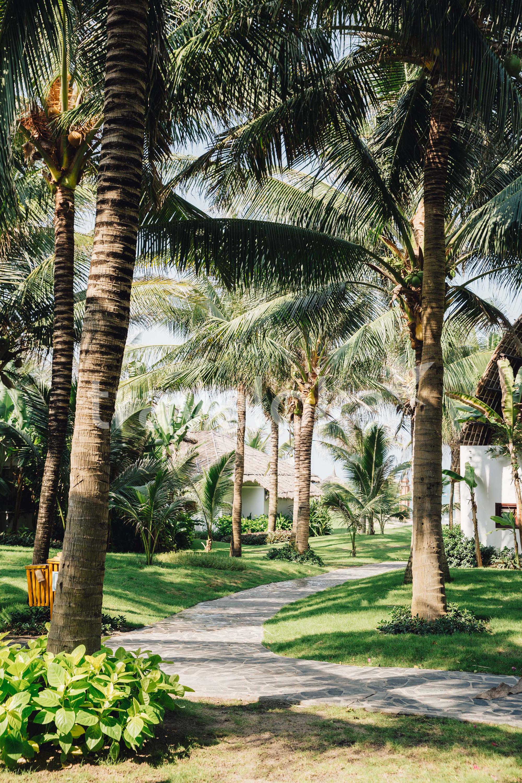 Cẩm nang du lịch Phan Thiết - Muine Bay Resort