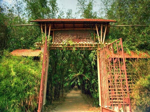 Làng tre lớn nhất Đông Nam Á - Phú An