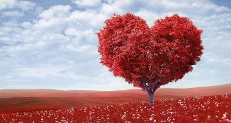 Tìm hiểu lòng vị tha là gì